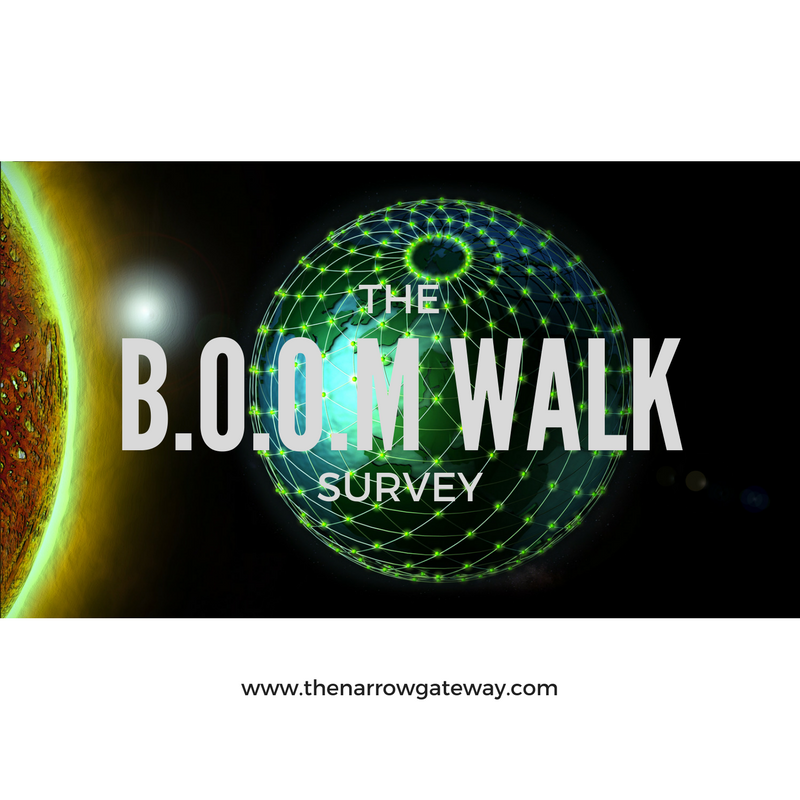The boom walk survey