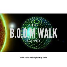 The boom walk survey