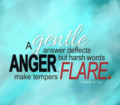 A gentle answer deflects harsh words...