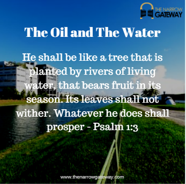 the oil and the river-with verse
