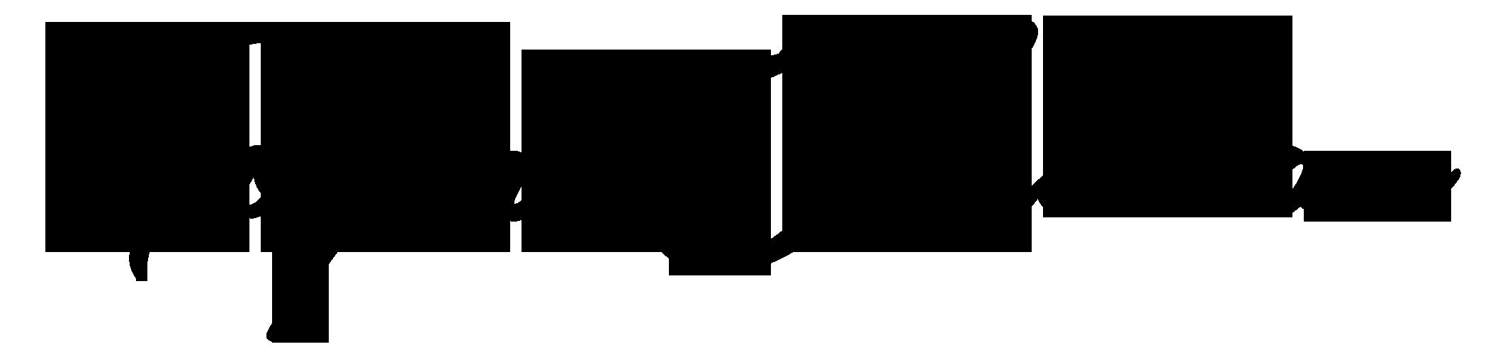 Toyin Oladiran Logo - Black